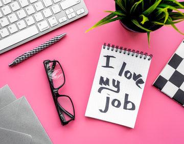 Qu'est-ce que le métier idéal ?